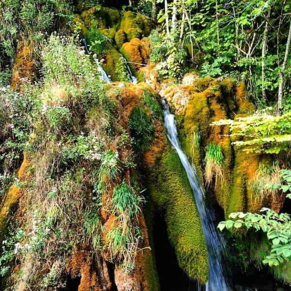 De Turismo Rural en Primavera
